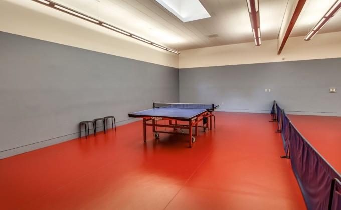 hillside_complex_table_tennis